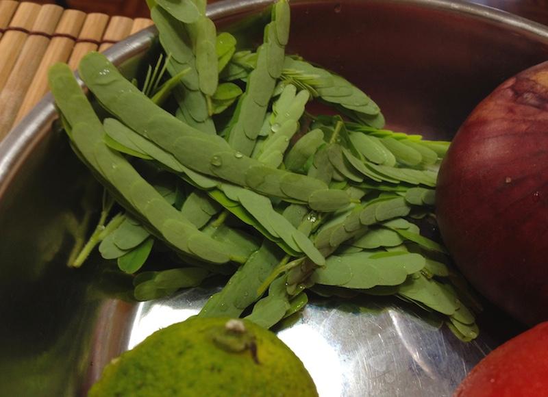 タマリンドの葉