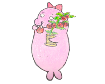 【プチトマト栽培】ペットボトルでも育てられるレジナの栽培記録