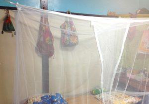 蚊帳サイコー