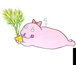 【ディル栽培記録】ガチャガチャの栽培キットでディルを育てました