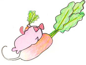 ダイソーの種ラディッシュ(二十日大根)の栽培記録