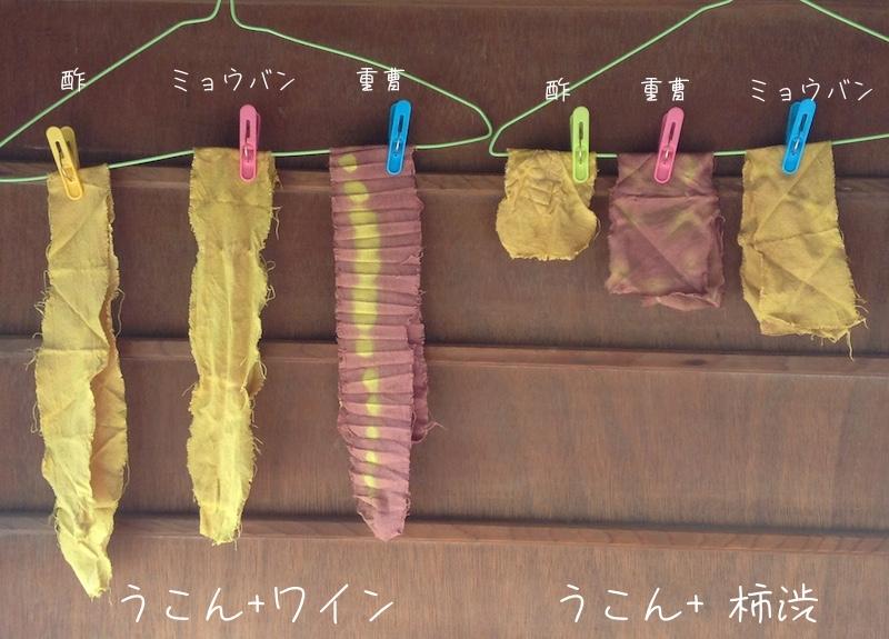 草木染め実験