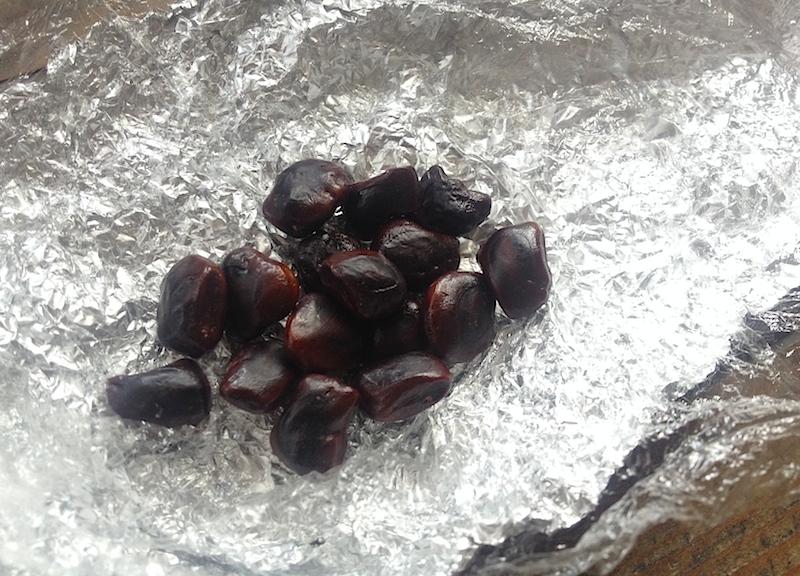 タマリンドの種