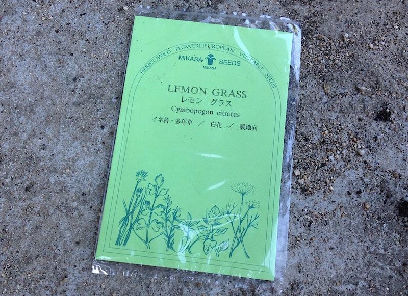 レモングラスの種