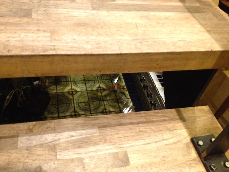 階段の下の金魚